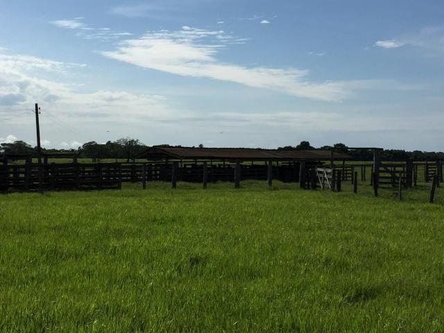 Fazenda 4.983 hectares em Livramento 35 km de Cuiabá - Foto 2
