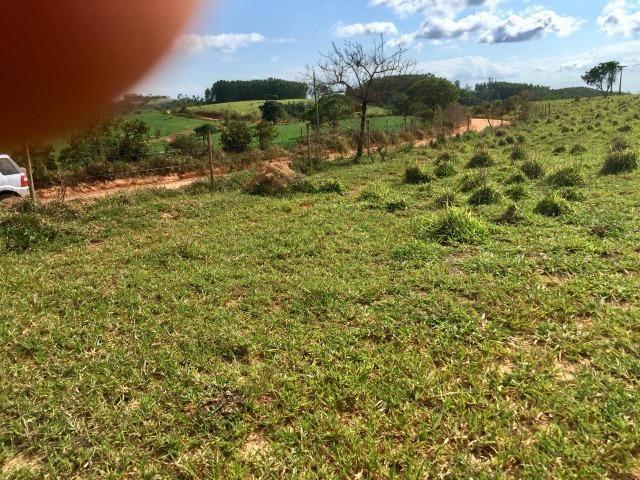 Fazenda em bambui 440 hectares 3.000.000.00 - Foto 13