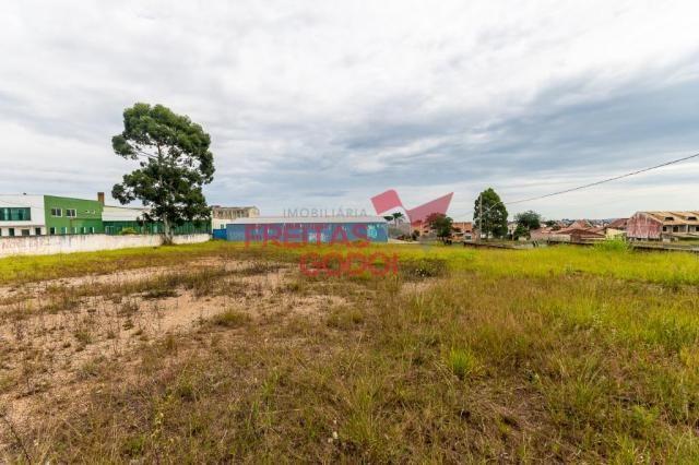 Terreno para alugar no Centro - Pinhais/PR - Foto 7