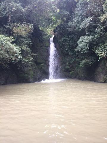 Terreno/Cachoeira - Foto 9