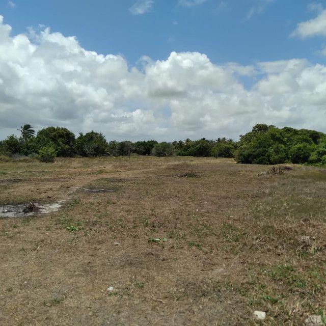 Terreno a venda em Lucena medindo 14,0 x 20,0 metros - Foto 3