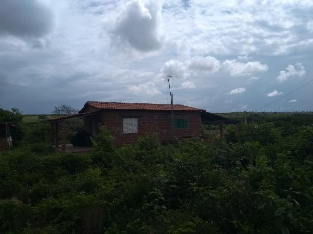 Granja BR 101 1 Hectare Arisco Paú Casa Sede Energia Elétrica Rio Maxaranguape 1km da BR - Foto 6