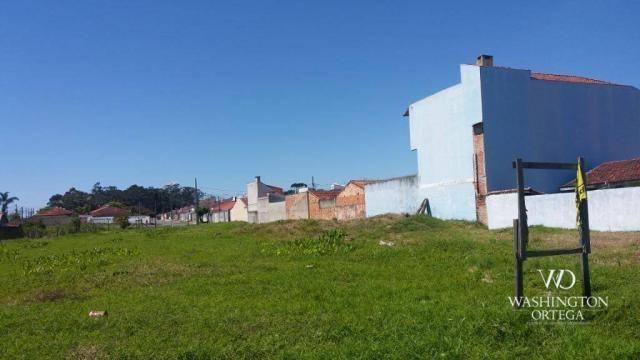 Terreno à venda, 2952 m² por r$ 2.300.000,00 - afonso pena - são josé dos pinhais/pr - Foto 5