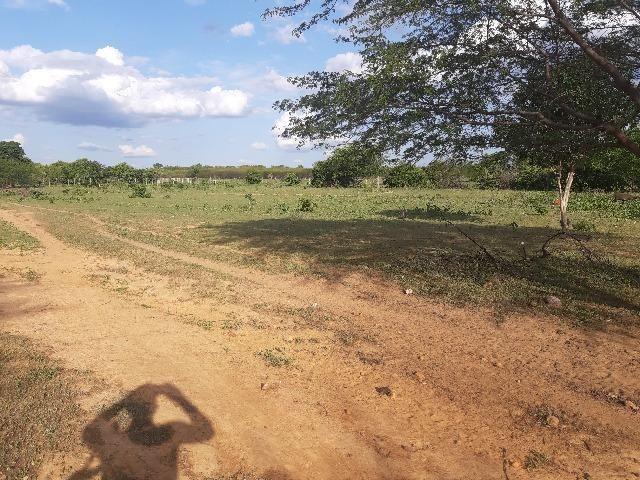 Vendo fazenda ou troco - Foto 15