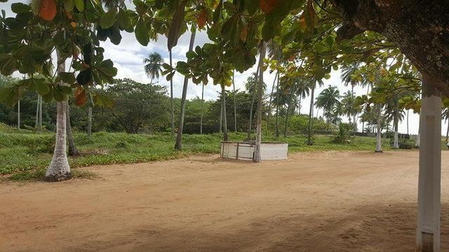 Terreno à beira mar 44x34 em guaxuma - Foto 6