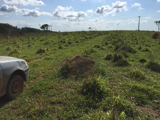 Fazenda em bambui 440 hectares 3.000.000.00 - Foto 5