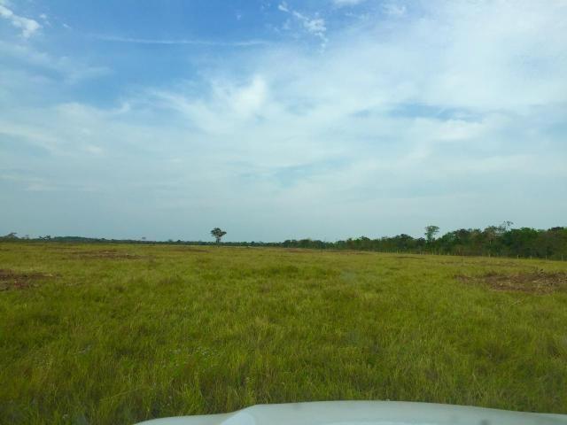 Fazenda 4.983 hectares em Livramento 35 km de Cuiabá - Foto 10