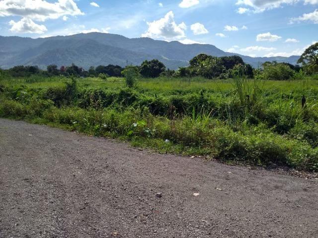 Terrenos com 1600 e 2100 m² plano - Documentado - Santa Cândida - Itaguaí - Foto 4