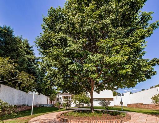 Casa de condomínio à venda com 3 dormitórios cod:V33715 - Foto 10