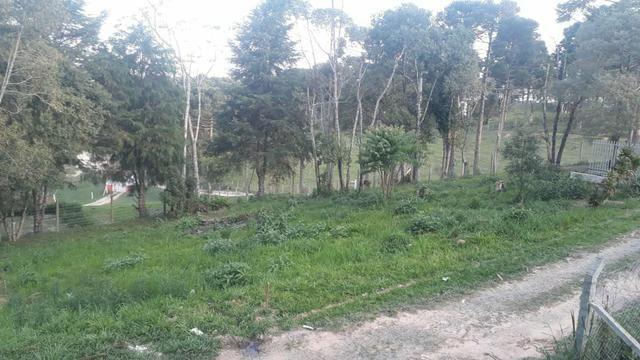 Vendo terreno em campo largo - Foto 2
