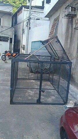 Vendo gaiola gigante $800 reais - Foto 3
