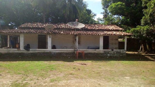 Aluga-se casa em Algodoal - Foto 13