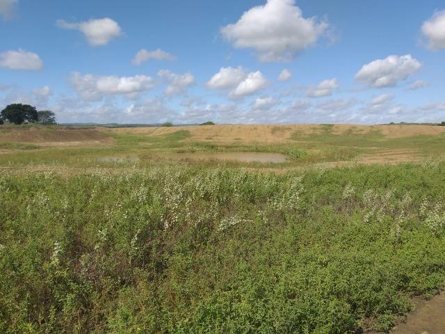 Propriedade de 8 hectares-toda cercada-com 2 casas, a 5 km de Apoti-PE - Foto 14