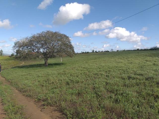 Propriedade de 8 hectares-toda cercada-com 2 casas, a 5 km de Apoti-PE - Foto 9
