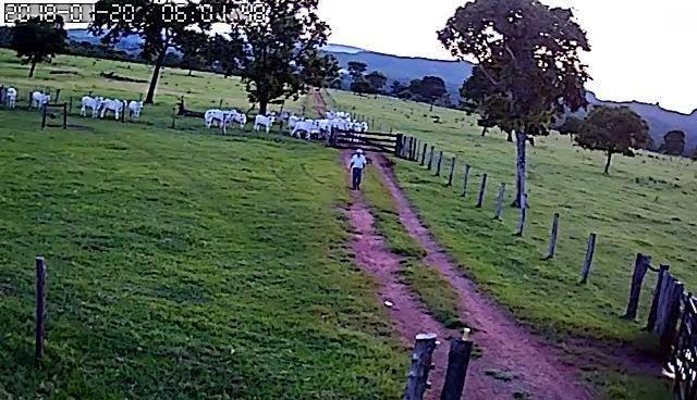 Fazenda em Guiratinga 680Hectares - Foto 13