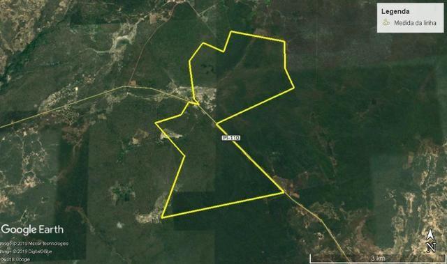 Área rural com 2 mil hectares em Piracuruca, agricultável e excelente logística! - Foto 2