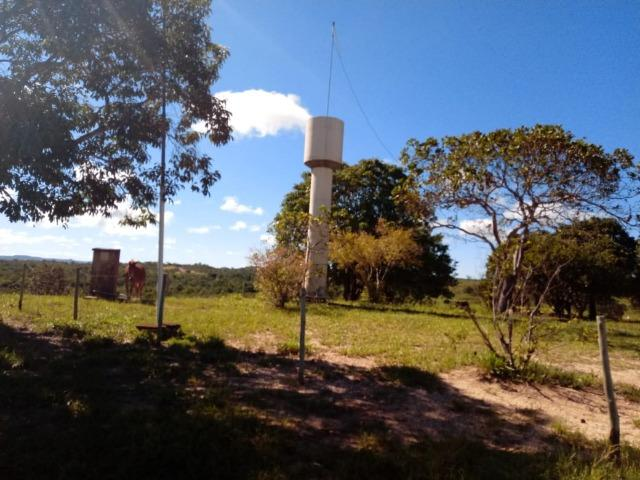 1586 Hectares, Municipio de Camapuã MS - Foto 7