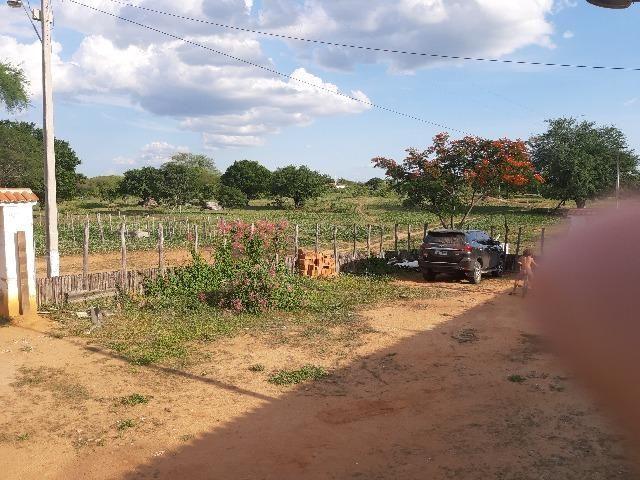 Vendo fazenda ou troco - Foto 9