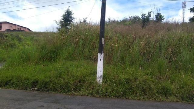 Vendo terreno na Av. Roberto Santos - Foto 3