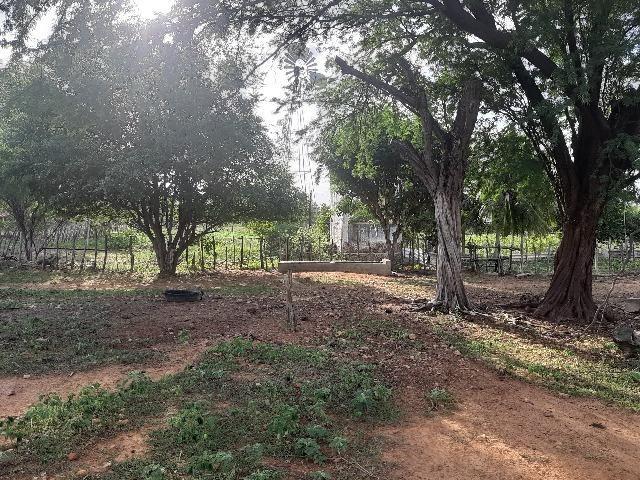 Vendo fazenda ou troco - Foto 18