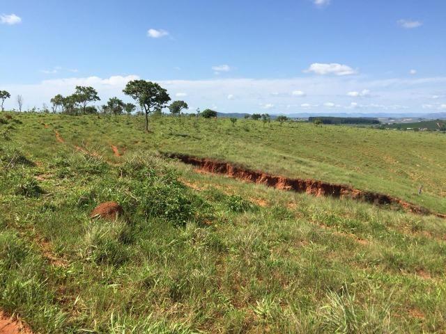 Fazenda em bambui 440 hectares 3.000.000.00 - Foto 6