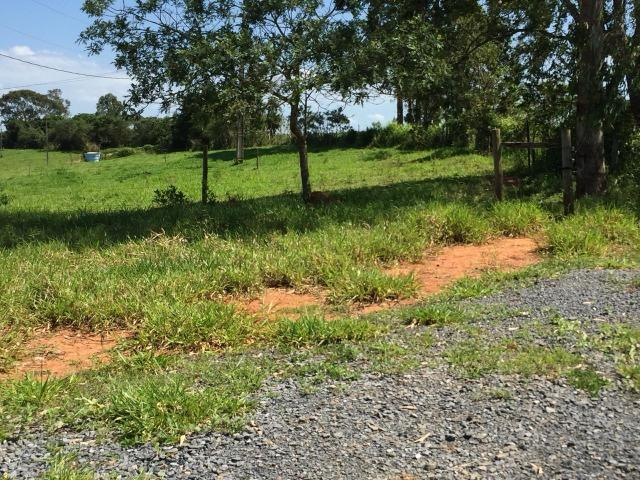 Fazenda em bambui 440 hectares 3.000.000.00 - Foto 12