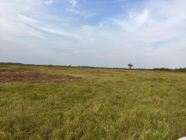 Fazenda 4.983 hectares em Livramento 35 km de Cuiabá - Foto 8