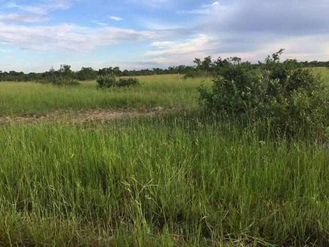 Fazenda 4.983 hectares em Livramento 35 km de Cuiabá - Foto 12