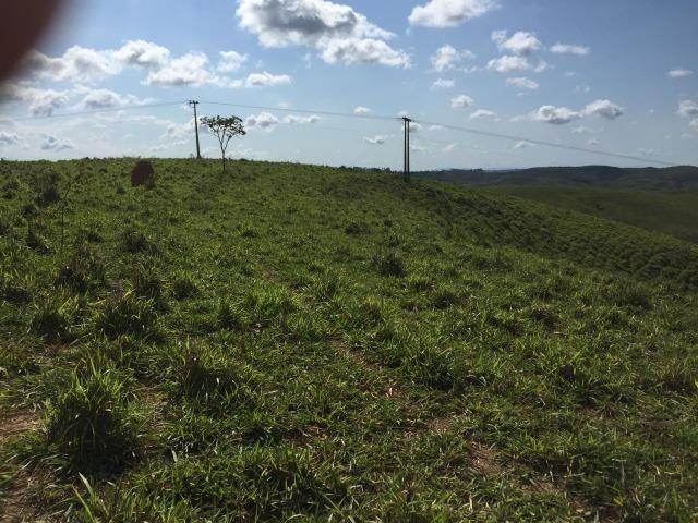 Fazenda em bambui 440 hectares 3.000.000.00 - Foto 7