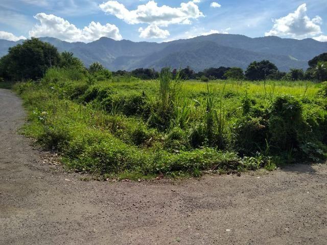 Terrenos com 1600 e 2100 m² plano - Documentado - Santa Cândida - Itaguaí - Foto 3
