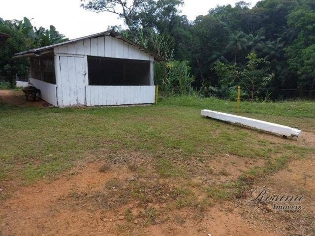 Chácara com 3 dormitórios à venda, 24200 m² por R$ 650.000,00 - Capituva - Morretes/PR - Foto 13