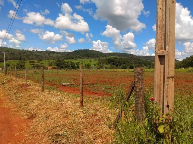 Vendo uma chácara em Bonfinópolis - Foto 3