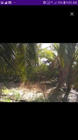 Vende-se um terreno no panaquatira - Foto 5