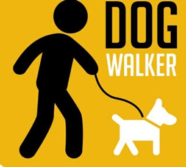 Dog walker passeador de ações