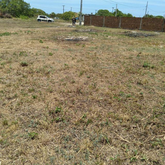 Terreno a venda em Lucena medindo 14,0 x 20,0 metros - Foto 2