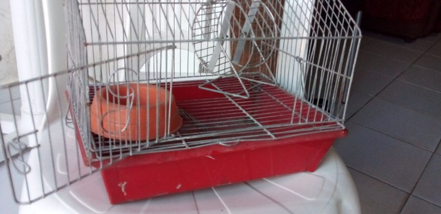 Gaiola De Hamster  - Foto 4