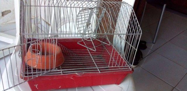 Gaiola De Hamster  - Foto 5