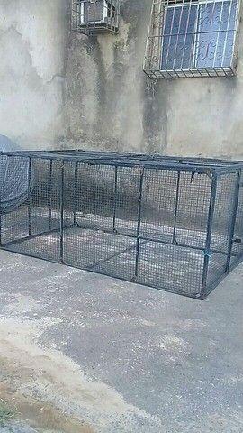 Vendo gaiola gigante $800 reais - Foto 5