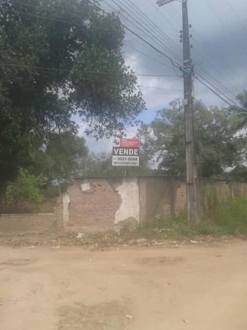 Excelente área de terra no povoado de boa hora, próximo ao parque viver tomba - Foto 16