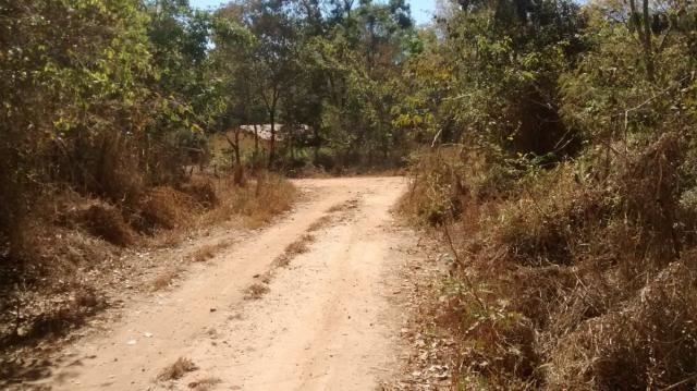 Área, Fazenda Santo Antônio das Lages, Caldas Novas-GO - Foto 2