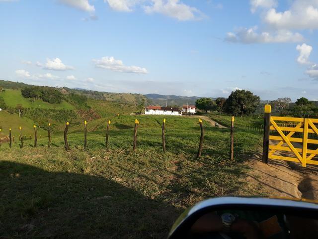 Vendo propriedade união dos Palmares - Foto 11