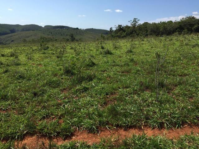 Fazenda em bambui 440 hectares 3.000.000.00 - Foto 9