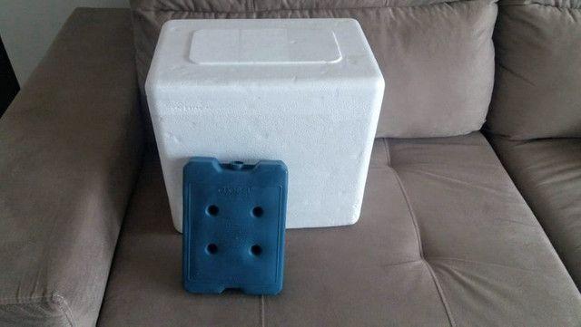 Caixas de Térmicas / Caixas de Isopor de 12 litros novas sem uso!!