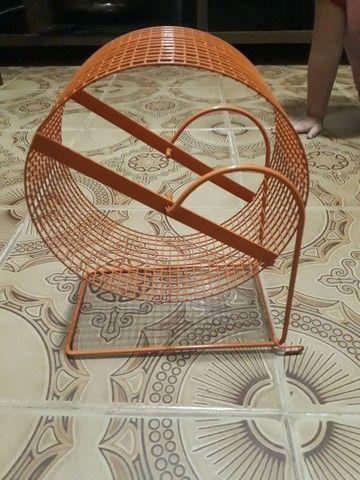 Roda hamster sírio  - Foto 3