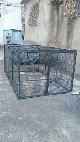 Vendo gaiola gigante $800 reais - Foto 4