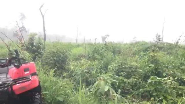 fazenda em roraima