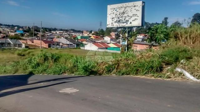 Terreno à venda em Atuba, Curitiba cod:152877 - Foto 11