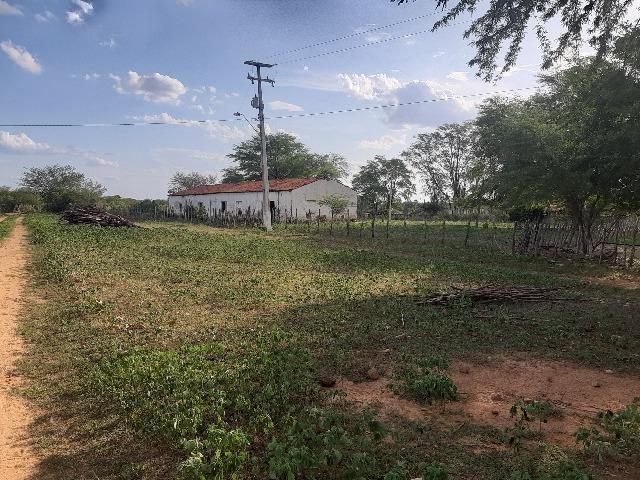 Vendo fazenda ou troco - Foto 14