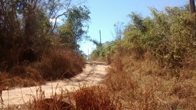 Área, Fazenda Santo Antônio das Lages, Caldas Novas-GO - Foto 7