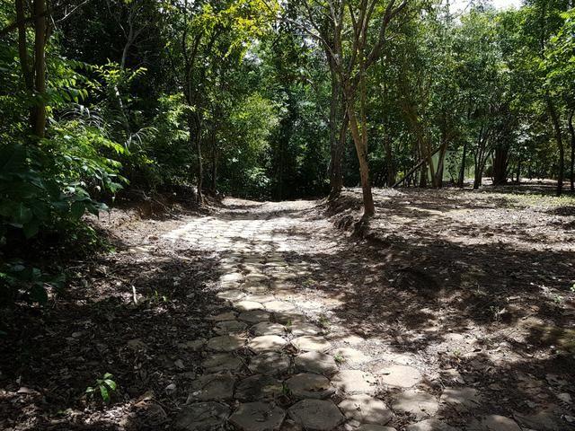 Sitio no Rio Manso - Foto 14